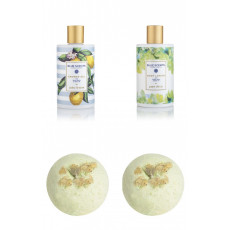 Lemon & Powder Kiss